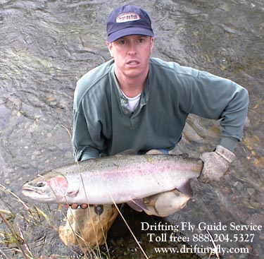 Coastal Native Steelhead