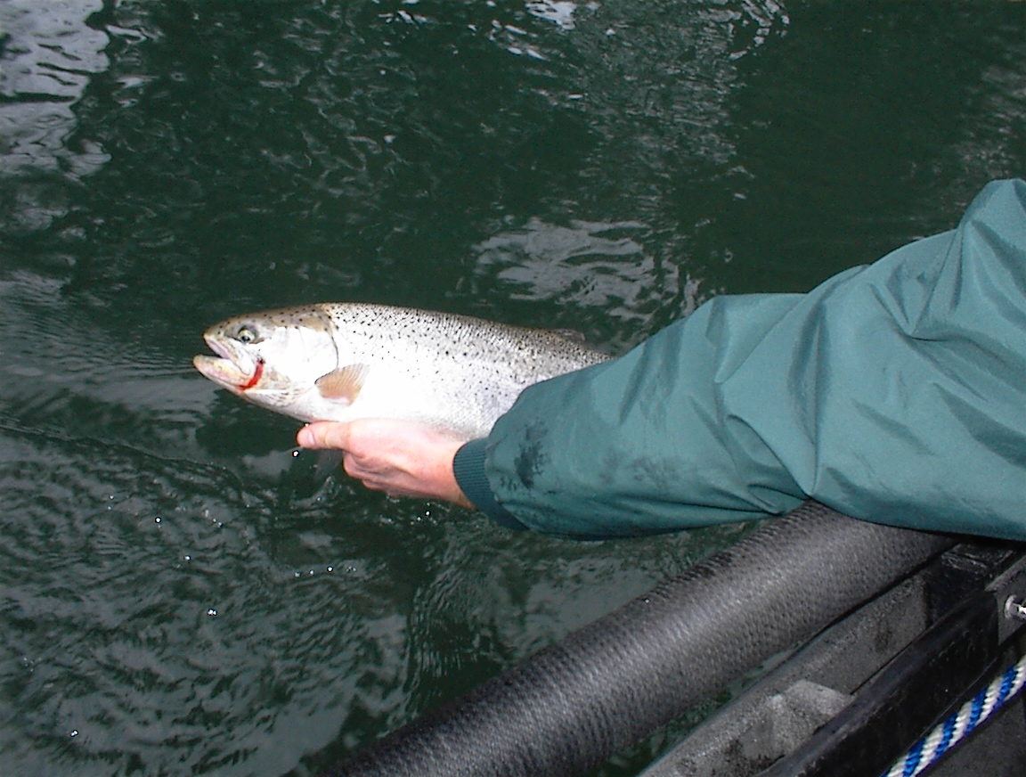 Guide You To Fish Northwest - Guided Fishing Trips for Salmon ...