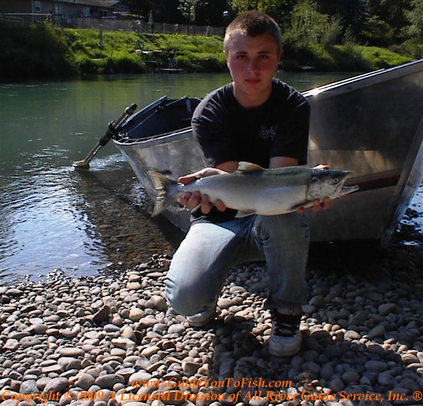 "Nisqually River ""Bright"" Pink Salmon"