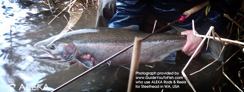 GUIDE YOU TO FISH NORTHWEST uses ALEKA Fly Rods & Reels
