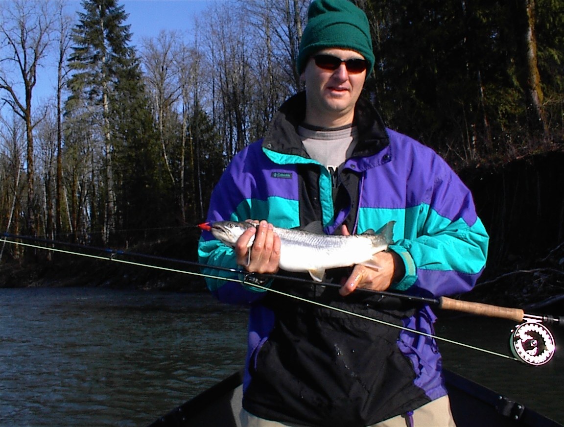 Sauk River Dolly Varden